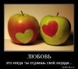 Емоції, почуття, відчуття